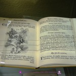 Boccone, Paolo (1633 - 1704) [Ed. facs.] Icones & descriptiones rariorum plantarum Siciliae, Melitae...