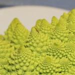 cropped-romanesco1.jpg
