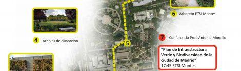 Ruta verde en Ciudad Universitaria