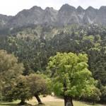 01_Sierra del Pinar_DSC_0711