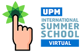 Virtual International Summer School