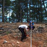 Control de regeneración en bosquetes