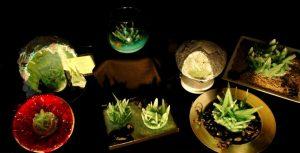 Foto cristales del concurso