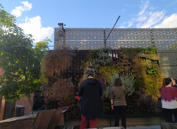 Jardín vertical exterior del itdUPM