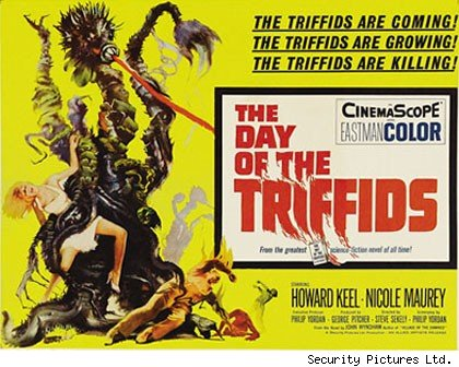 Cartel película The Day of the Triffids (1962)