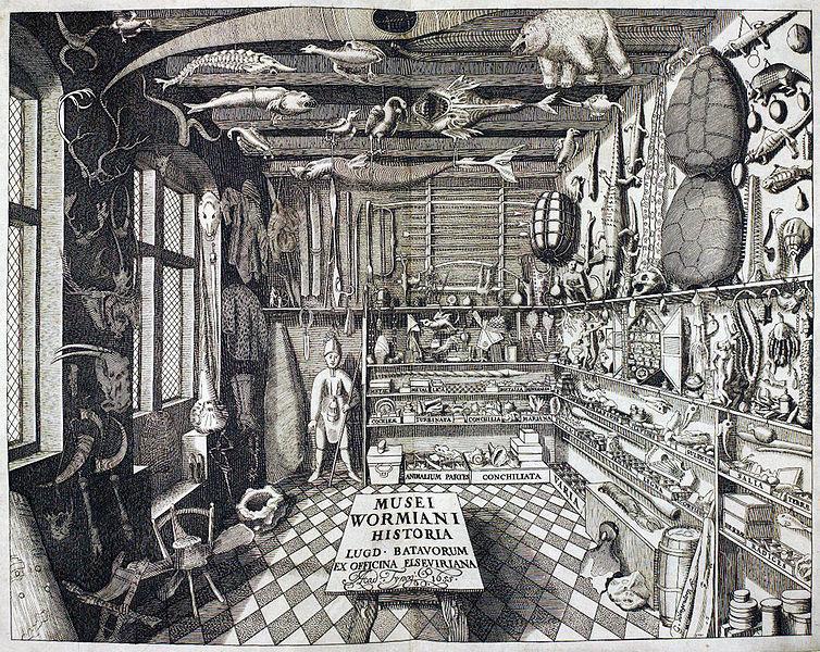 Frontispicio de Musei Wormiani Historia mostrando el cuarto de maravillas de Worm