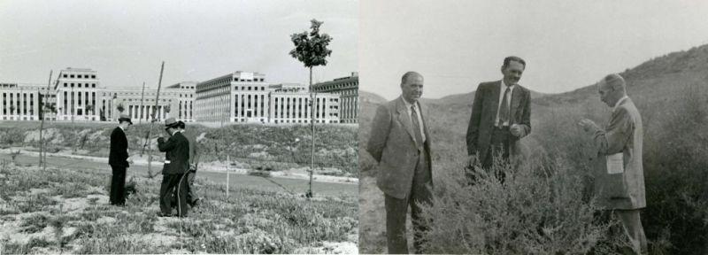 Fotografía: Trabajos de repoblación Ciudad Universitaria. Excursión Aranjuez 1947.