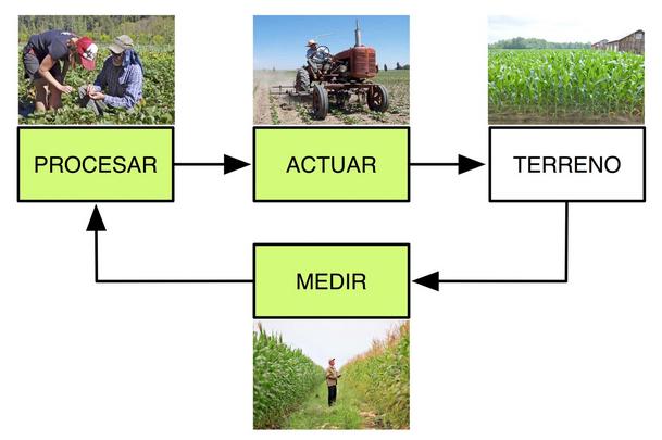 Ciclo agricola de control