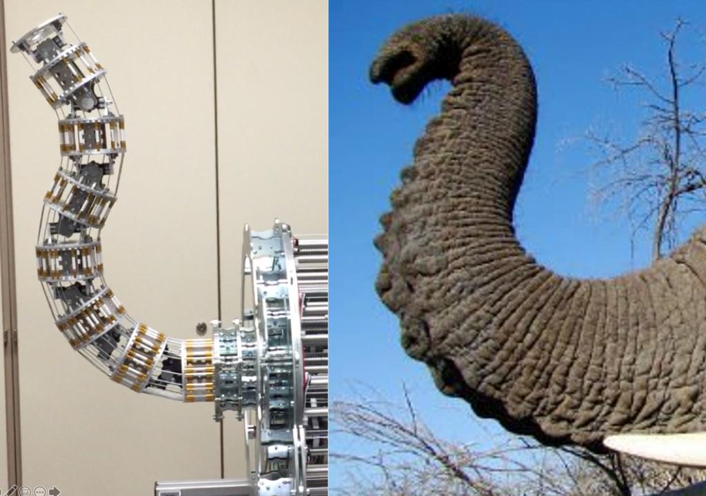 Robot Mach-I y trompa de elefante
