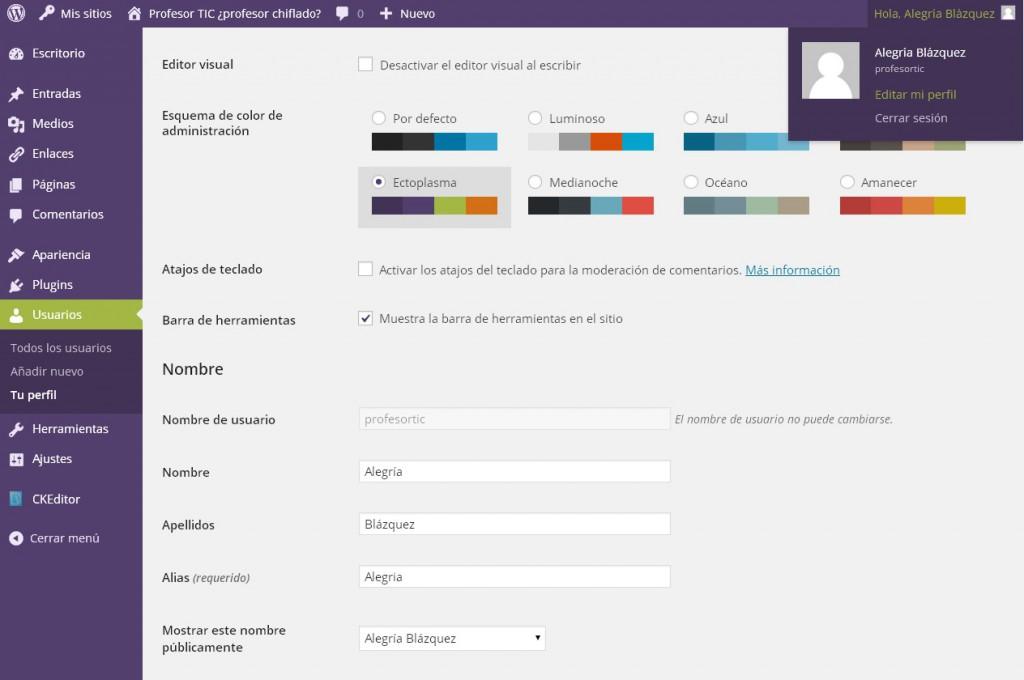 panel edición perfil de usuario